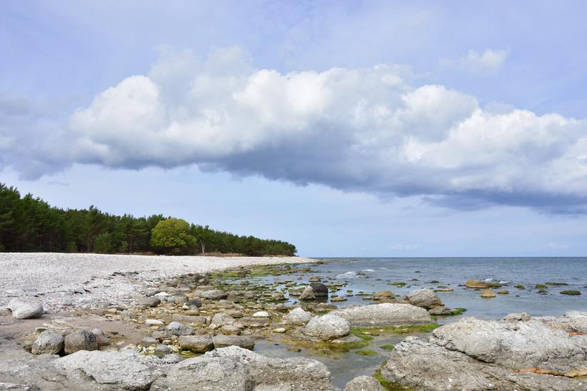Playa de Norsta Auren en la isla de Gotland