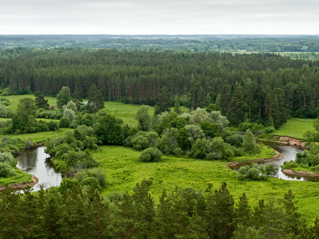 Luna de miel en Estonia: un país de cuento de hadas