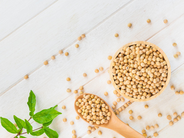La soja como parte de una sana dieta preboda