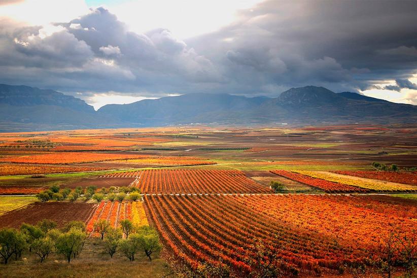 Escapada romántica a la Rioja antes de la boda: viñedos