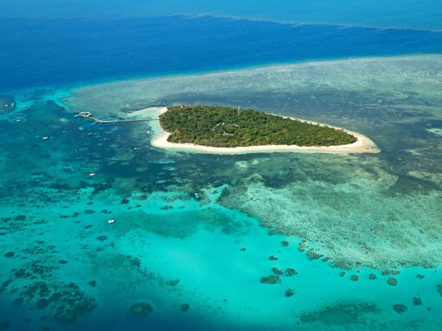 Luna de miel en la isla de Heron: un paraíso en Australia