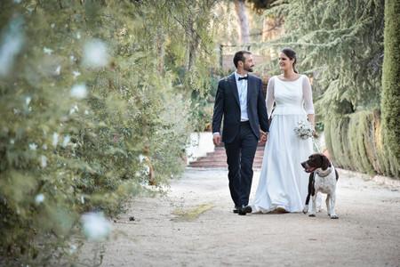 ¿Cómo hacer que vuestro perro participe activamente de la boda? 7 encantadoras formas de conseguirlo
