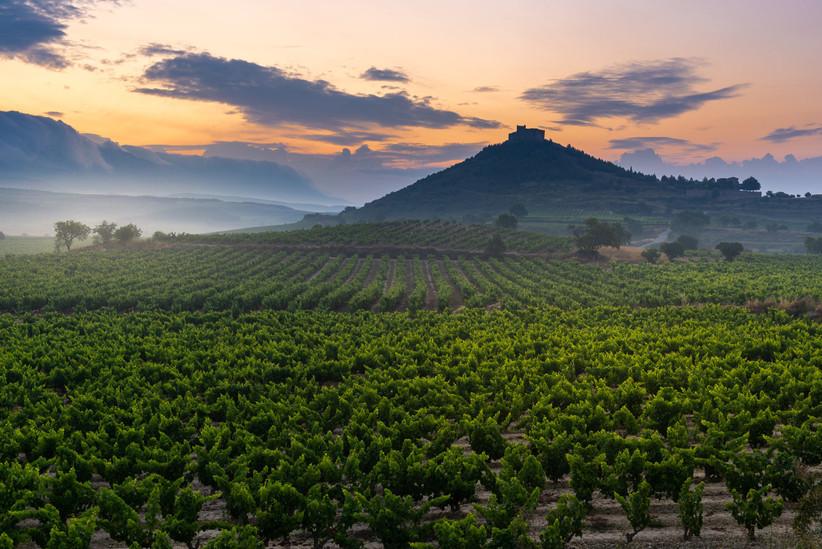 Escapada romántica a La Rioja antes de la boda: viñedos con castillo Davalilo