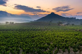 La Rioja: los 6 mejores planes para disfrutar en pareja durante una escapada romántica