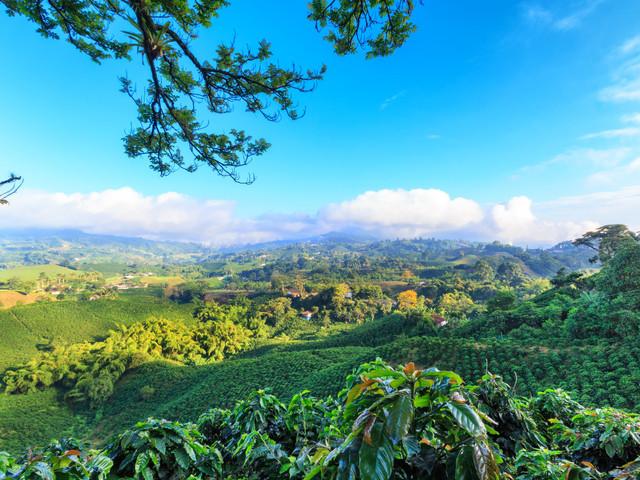 Luna de miel en Colombia: 8 propuestas mágicas