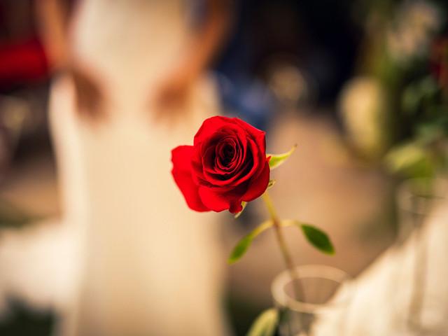 Textos para la ceremonia de la rosa, un ritual lleno de romanticismo
