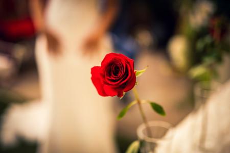 La textos 'top' para celebrar la ceremonia de la rosa