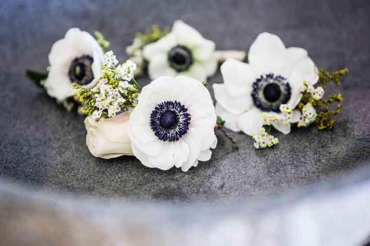 Prendido o boutonnière con flores blancas y azules