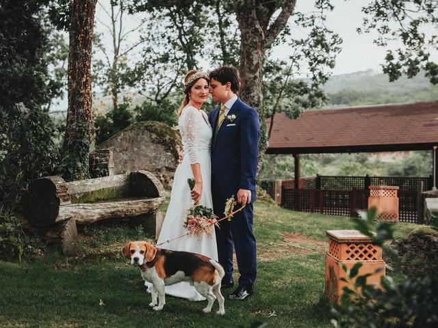 10 ideas para compartir la boda con vuestra mascota