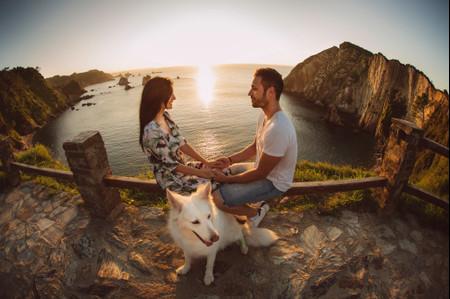 ¿Buscáis ideas originales para vuestra sesión de fotos preboda? Os damos 7 increíbles ideas para incluir a vuestro perro