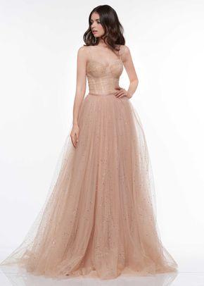 2072, Colors Dress