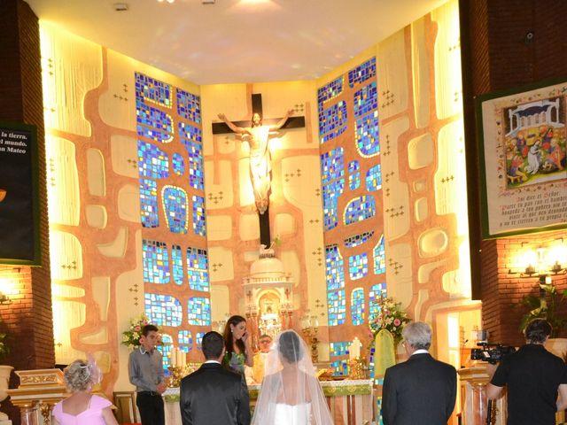 La boda de Alejandro y Amalia en Nueva Andalucia, Málaga 9