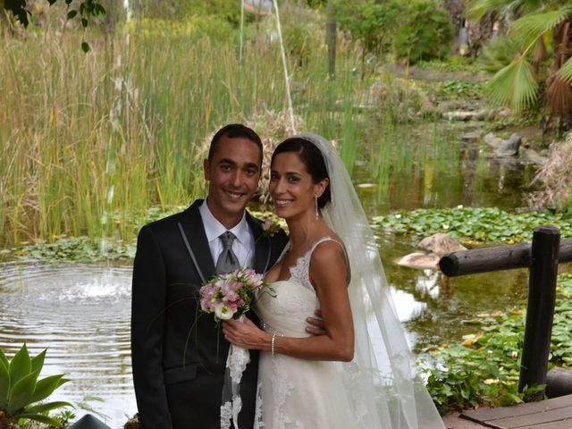 La boda de Alejandro y Amalia en Nueva Andalucia, Málaga 16