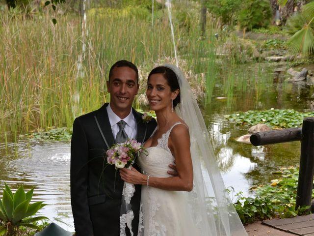 La boda de Alejandro y Amalia en Nueva Andalucia, Málaga 17