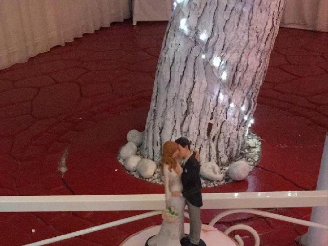 La boda de Sergio y Alisa  en San Juan De Alicante, Alicante 6
