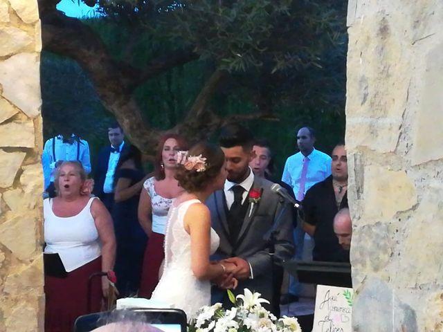 La boda de pablo y cristina en L' Alcúdia, Valencia 1