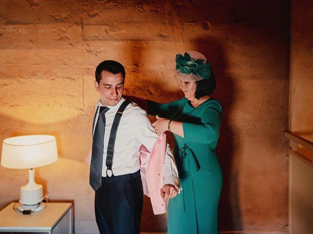 La boda de Pedro y Mercedes en Manzanares, Ciudad Real 14