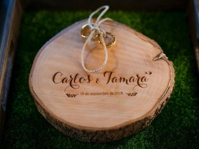 La boda de Tamara y Carlos en Toledo, Toledo 10