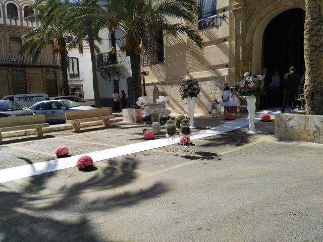 La boda de Javi y María José en Albox, Almería 11