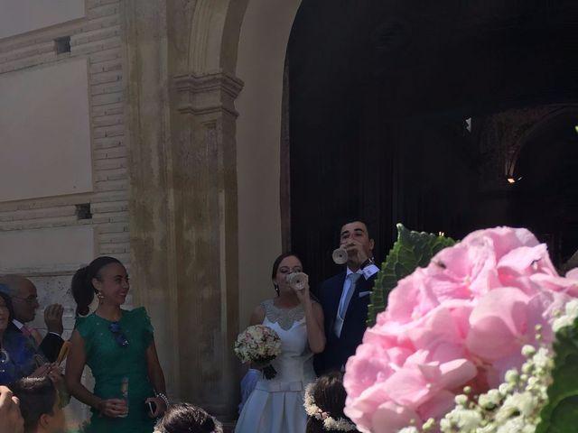 La boda de Javi y María José en Albox, Almería 13