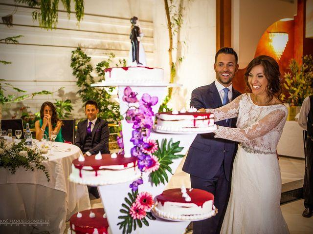 La boda de Antonio y Sonia en Almansa, Albacete 29