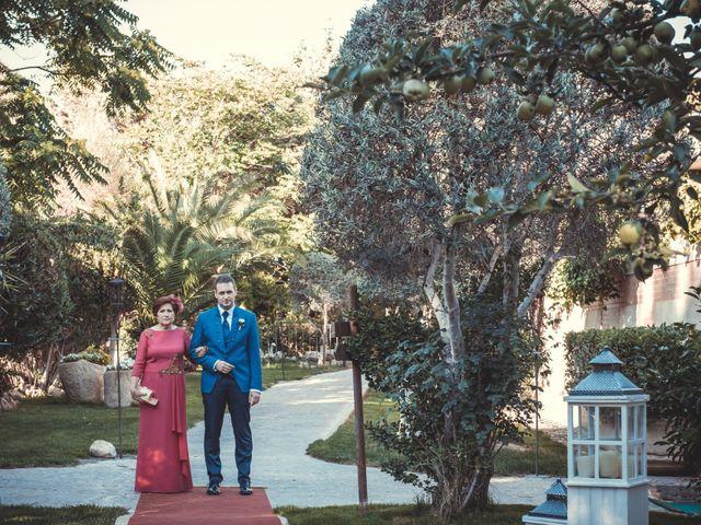 La boda de Álvaro y Elvira en Burujón, Toledo 36