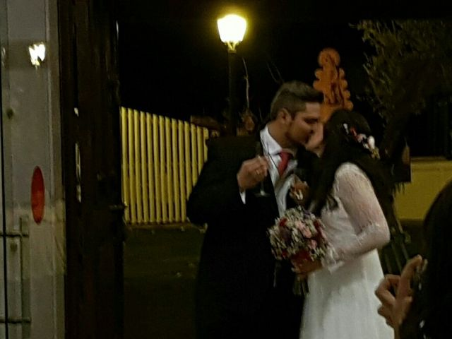 La boda de Antonio y Emma en El Rocio, Huelva 2