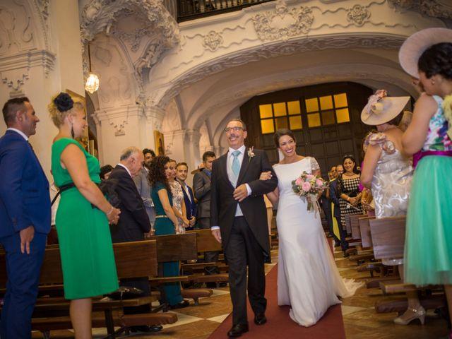 La boda de Zeus y Sonia en Jerez De La Frontera, Cádiz 10