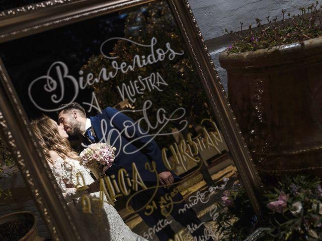 La boda de Alicia y Christian en Granada, Granada 30