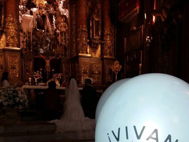 La boda de Jose Luis y Bárbara  en Jerez De La Frontera, Cádiz 5
