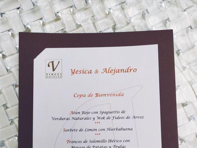 La boda de Alejandro y Yesica en Granada, Granada 16