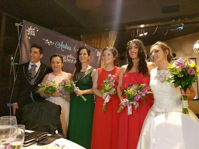 La boda de Jose y Andrea en Ribadavia, Orense 5