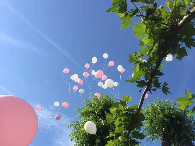 La boda de Huile y Xue  en Logroño, La Rioja 57
