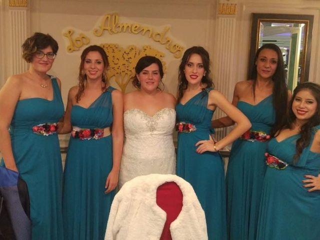 La boda de Julian  y Alejandra en Elx/elche, Alicante 2