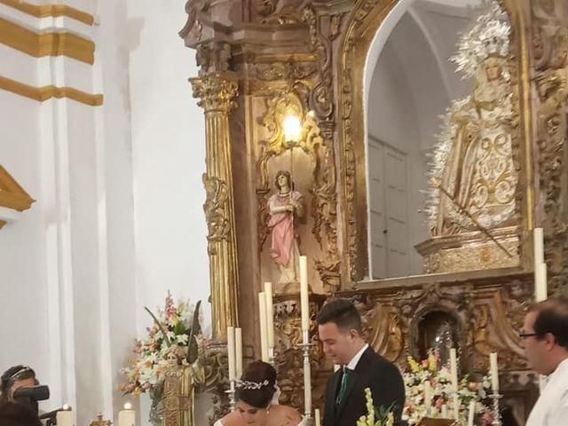 La boda de Alberto y Cristina en Manzanilla, Huelva 17