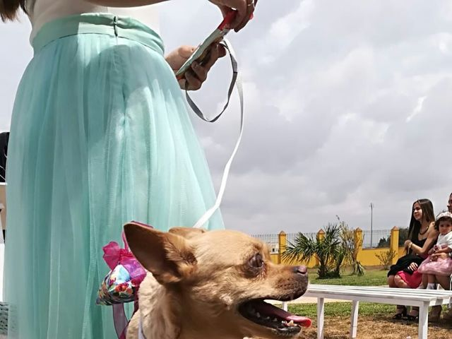 La boda de Paco y Belén en Cartagena, Murcia 5
