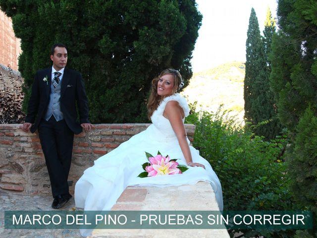 La boda de Mari Carmen y José Manuel en Granada, Granada 6