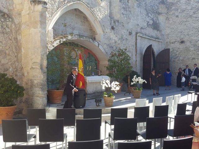 La boda de Saúl y Beatriz  en Fuentidueña, Segovia 13