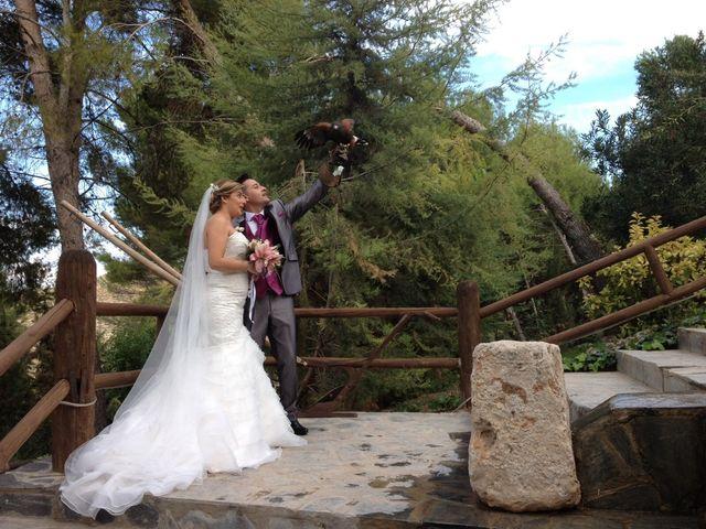 La boda de Dany y Rocío en Chinchon, Madrid 3