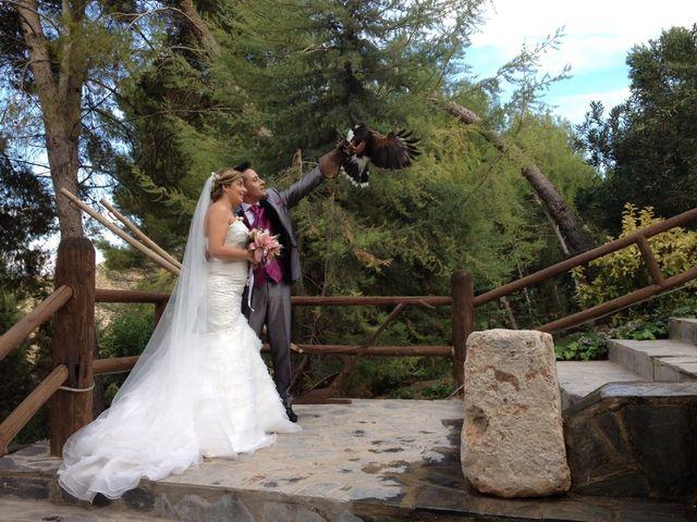 La boda de Dany y Rocío en Chinchon, Madrid 4