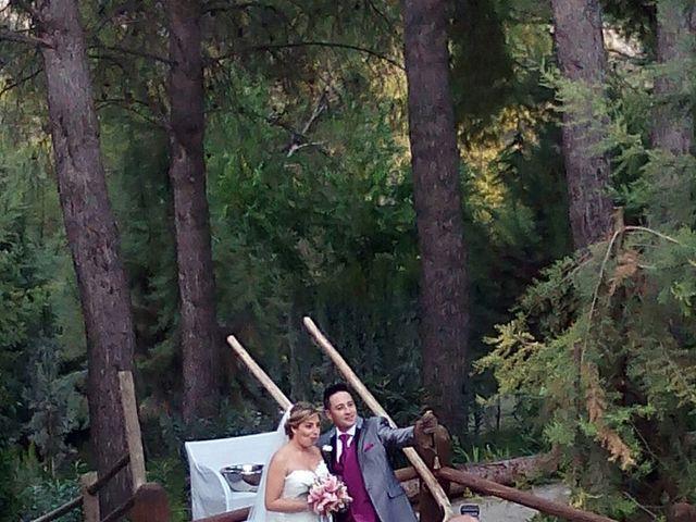 La boda de Dany y Rocío en Chinchon, Madrid 7