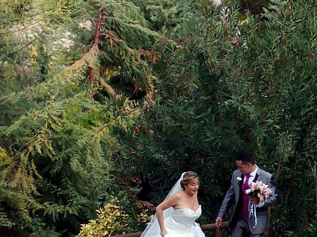 La boda de Dany y Rocío en Chinchon, Madrid 8