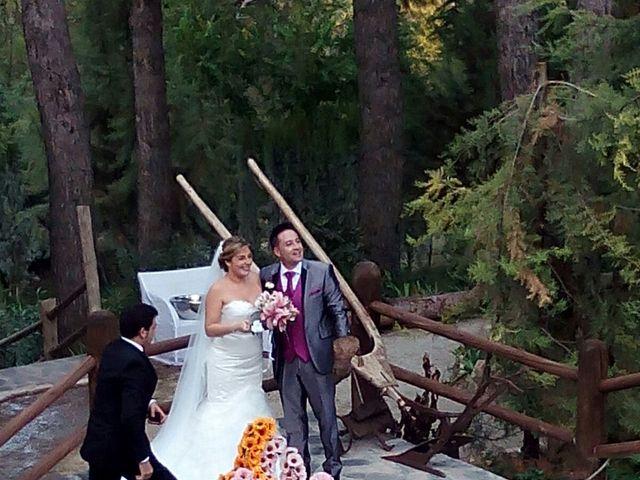 La boda de Dany y Rocío en Chinchon, Madrid 10