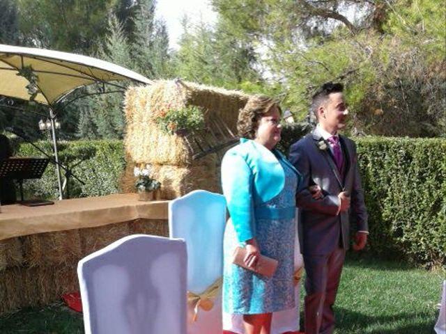 La boda de Dany y Rocío en Chinchon, Madrid 13