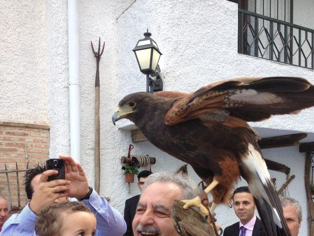 La boda de Dany y Rocío en Chinchon, Madrid 15