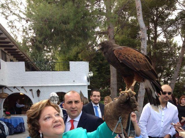 La boda de Dany y Rocío en Chinchon, Madrid 16