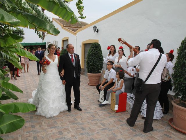 La boda de Juan Carlos y Noemí en Elx/elche, Alicante 10