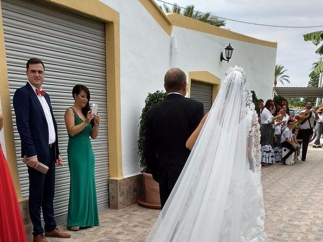La boda de Juan Carlos y Noemí en Elx/elche, Alicante 114