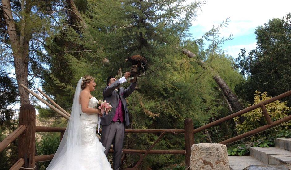 La boda de Dany y Rocío en Chinchon, Madrid