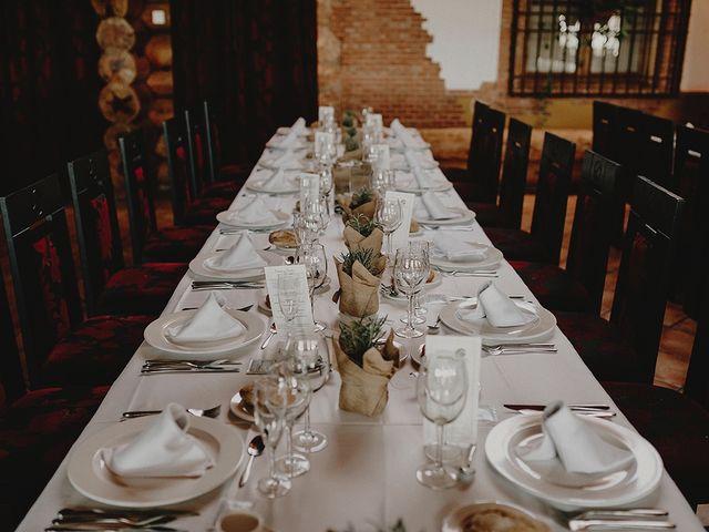La boda de César y Aroha en Villarrubia De Los Ojos, Ciudad Real 49